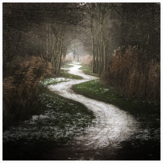 crooked-path2