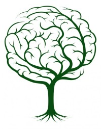 brain-tree-learning-490x622