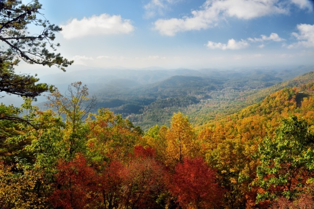 fall-colors-of-the-smoky-mountains