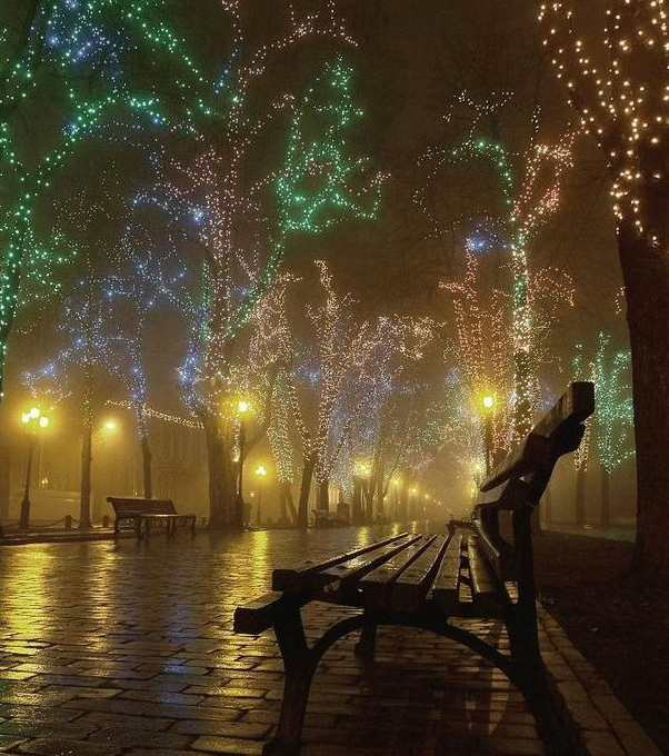 beautiful-christmas-lights