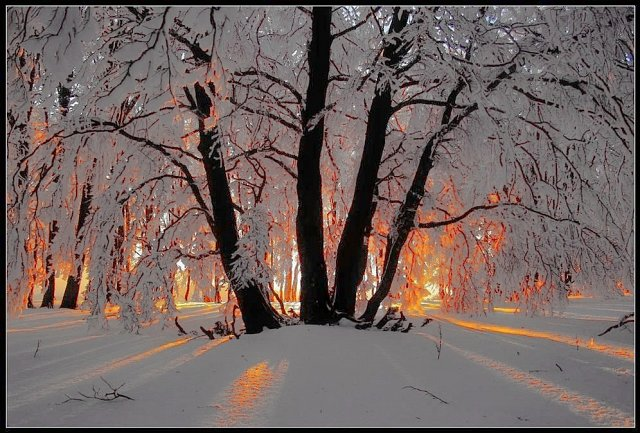 snowysunrisepoland
